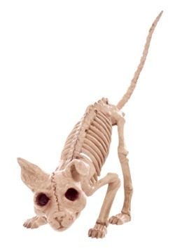 "7.5"" Kitty Skeleton"