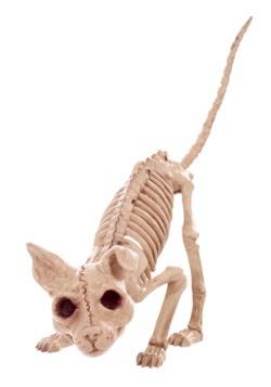 """7.5"""" Kitty Skeleton"""