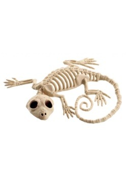 "7"" Gecko Skeleton Decoration"