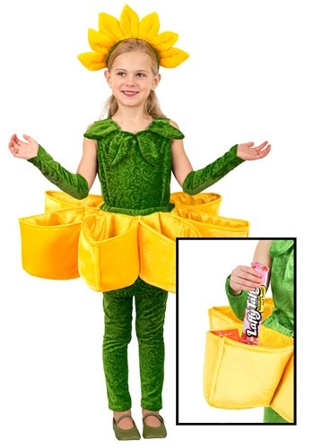 Girls Flower Petal Candy Catcher Costume