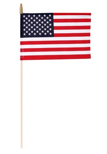 "8"" x 12"" Stick US Flags"