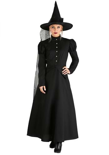 Click Here to buy Womens Deluxe Witch Costume | Wicked Witch Costume from HalloweenCostumes, CDN Funds & Shipping
