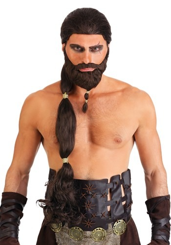 Click Here to buy Warrior King Wig and Beard Set from HalloweenCostumes, CDN Funds & Shipping