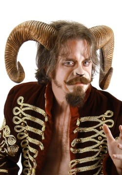 Adult Ram Horns