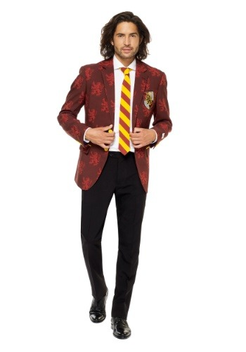 Opposuits Harry Potter Mens Suit Costume