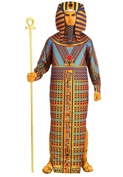 Adult King Tut Sarcophagus Costume