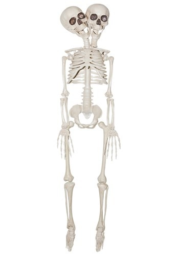 "20"" 2 Headed Skeleton Prop"