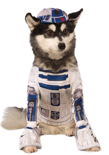 Star Wars R2-D2 For Your Pet