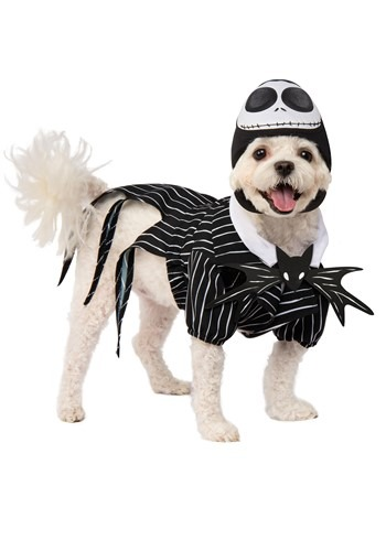 Click Here to buy Nightmare Before Christmas Jack Skellington Pet Costume from HalloweenCostumes, CDN Funds & Shipping