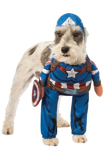 Click Here to buy The Captain America Pet Costume from HalloweenCostumes, CDN Funds & Shipping