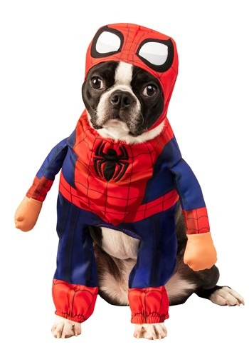 Click Here to buy Marvel Spider-Man Pet Costume from HalloweenCostumes, CDN Funds & Shipping