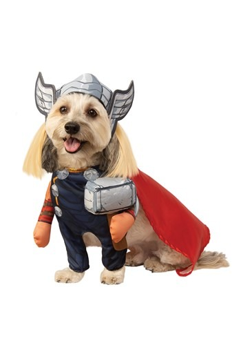 Click Here to buy Pet Thor Costume from HalloweenCostumes, CDN Funds & Shipping