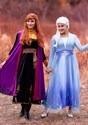 Deluxe Frozen 2 Womens Elsa Costume