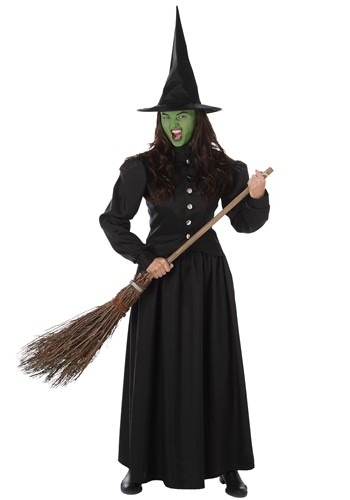 Women's Wicked Witch Costume
