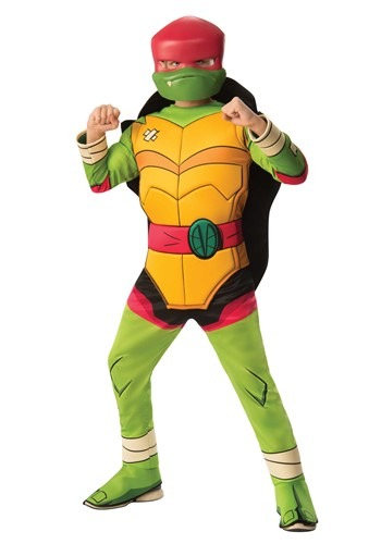 Teenage Mutant Ninja Turtle Brother Raphael Deluxe Kids Costume