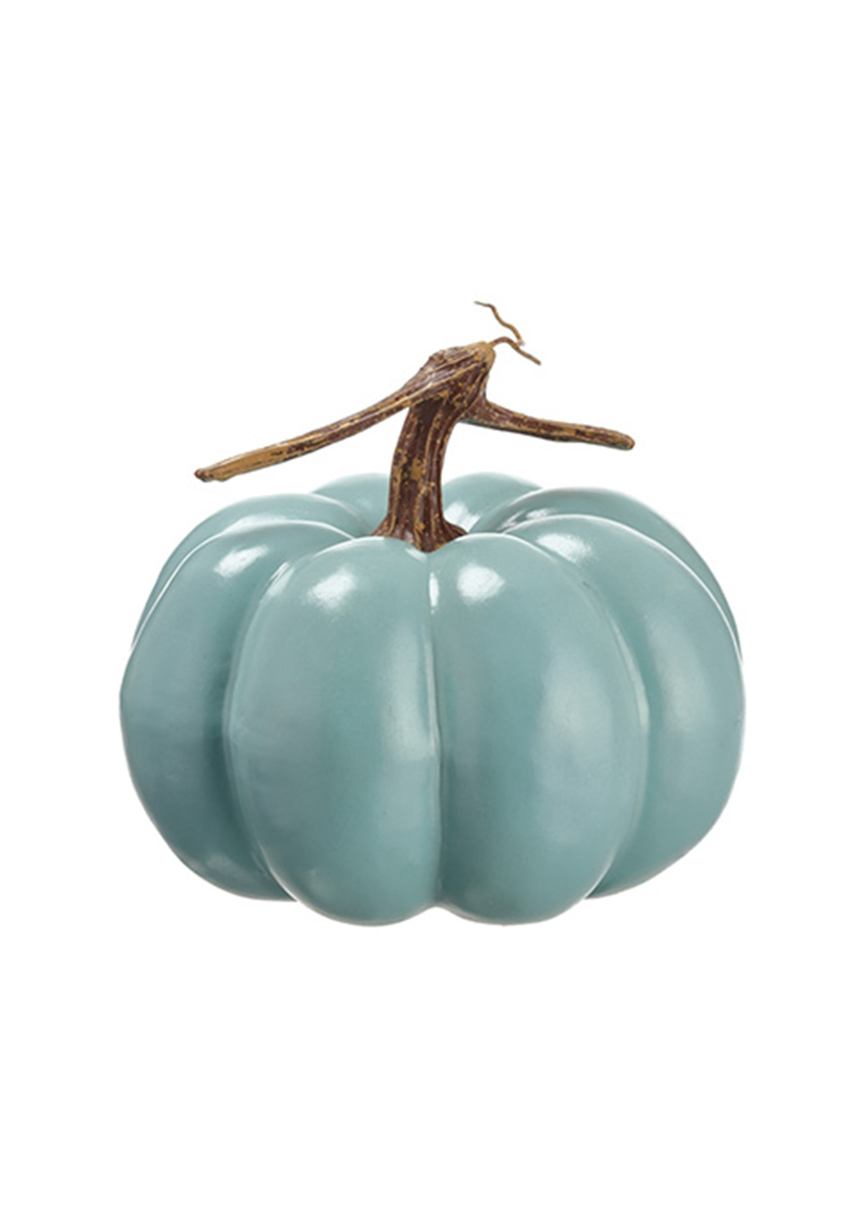 Trick or Treat Teal Pumpkin