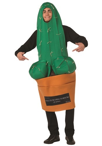 Funny Adult Happy Cactus Costume