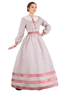 Women's Civil War Dress Costume