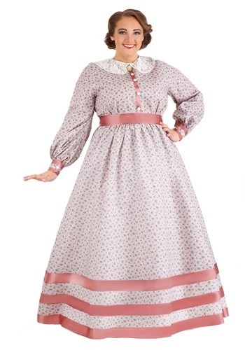 Plus Size Civil War Dress Costume for Women