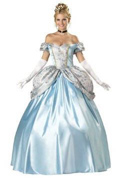 Elite Enchanting Princess Costume