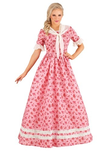 Lovely Southern Belle Womens Costume