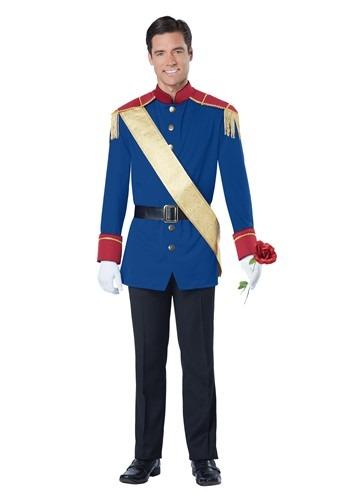 Prince Storybook Costume