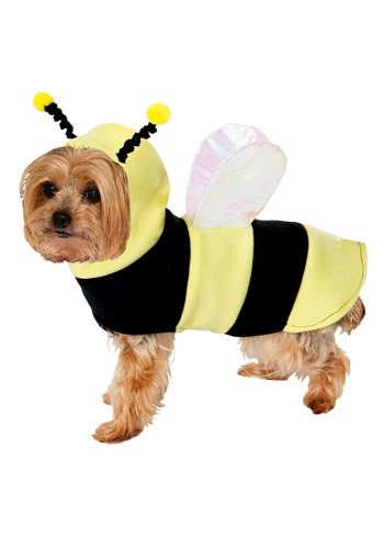 Dog Costume Bumble Bee