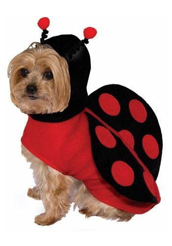 Dog Costume Ladybug