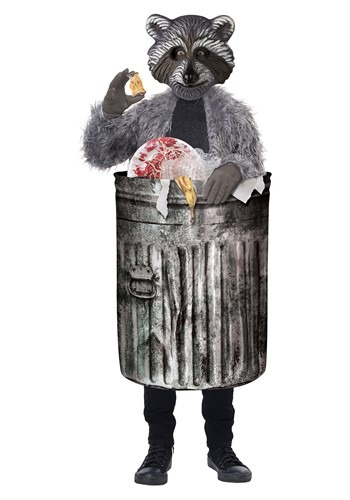 Trash Panda Kids Costume