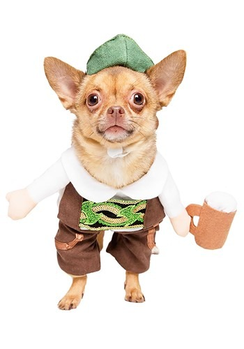 Click Here to buy Pet Oktoberfest Costume from HalloweenCostumes, CDN Funds & Shipping
