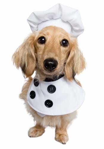 Click Here to buy Pet Chef Costume from HalloweenCostumes, CDN Funds & Shipping