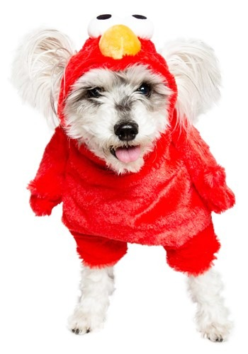 Click Here to buy Pet Sesame Street Elmo Costume from HalloweenCostumes, CDN Funds & Shipping