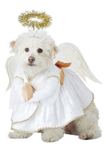 Click Here to buy Pet Heavenly Hound Costume from HalloweenCostumes, CDN Funds & Shipping