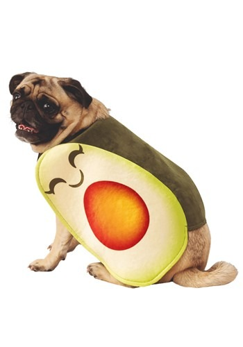 Dog Adorable Avocado Costume