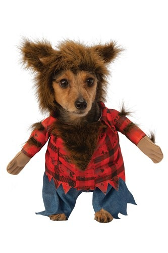 Click Here to buy Dog Howlin Werewolf Costume from HalloweenCostumes, CDN Funds & Shipping