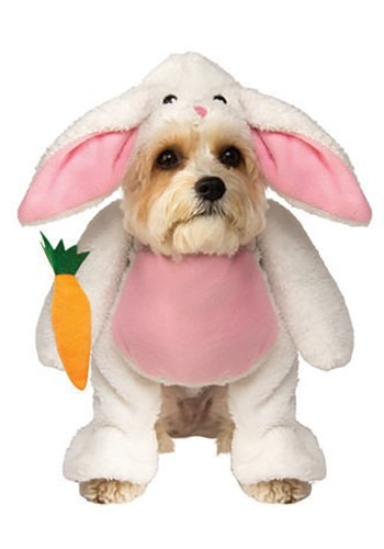 Hopping Bunny Dog Costume