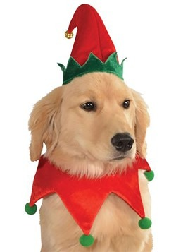 Elf Dog Costume Kit