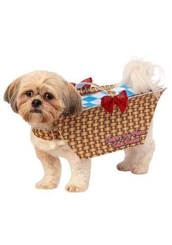 Click Here to buy Dog Wizard of Oz Toto in Basket Costume from HalloweenCostumes, CDN Funds & Shipping