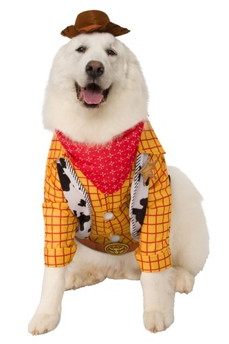 Plus Size Toy Story Woody Dog Costume