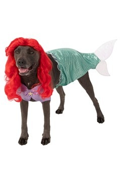 The Little Mermaid Ariel Plus Size Dog Costume