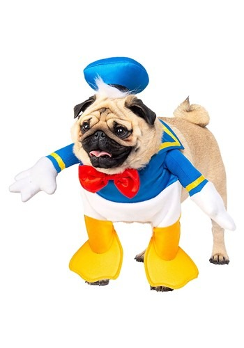Click Here to buy Disney Donald Duck Dog Costume from HalloweenCostumes, CDN Funds & Shipping