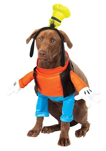 Click Here to buy Disney Goofy Dog Costume from HalloweenCostumes, CDN Funds & Shipping