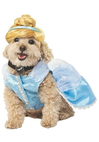 Disney Cinderella Dog Costume