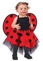 Infant Ladybug Costume