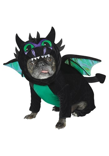 Doggy Dragon Pet Costume