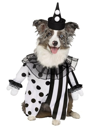 Click Here to buy Pet Killer Clown Costume from HalloweenCostumes, CDN Funds & Shipping