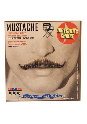 Magician Mustache in Gray
