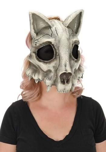 Skull Mask Cat
