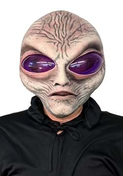 Adult Grey Alien