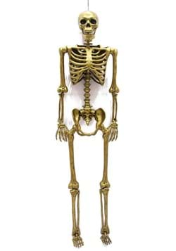 "60"" Gold Life Size Posable Skeleton Prop"